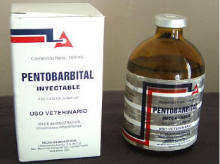 Species Death with Nembutal for both human and veterinary use